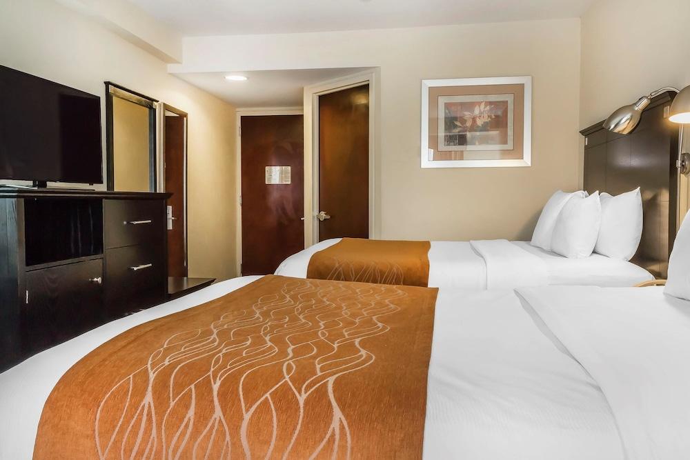 컴포트 인 & 스위트 라과디어 에어포트(Comfort Inn & Suites LaGuardia Airport) Hotel Image 17 - Guestroom
