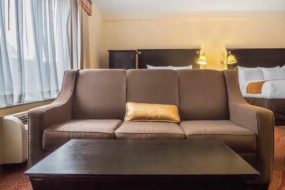 컴포트 인 & 스위트 라과디어 에어포트(Comfort Inn & Suites LaGuardia Airport) Hotel Image 19 - Guestroom