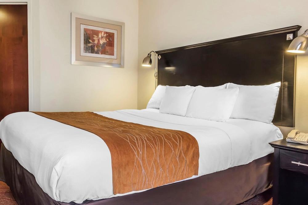 컴포트 인 & 스위트 라과디어 에어포트(Comfort Inn & Suites LaGuardia Airport) Hotel Image 21 - Guestroom
