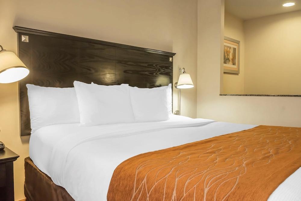컴포트 인 & 스위트 라과디어 에어포트(Comfort Inn & Suites LaGuardia Airport) Hotel Image 29 - Guestroom