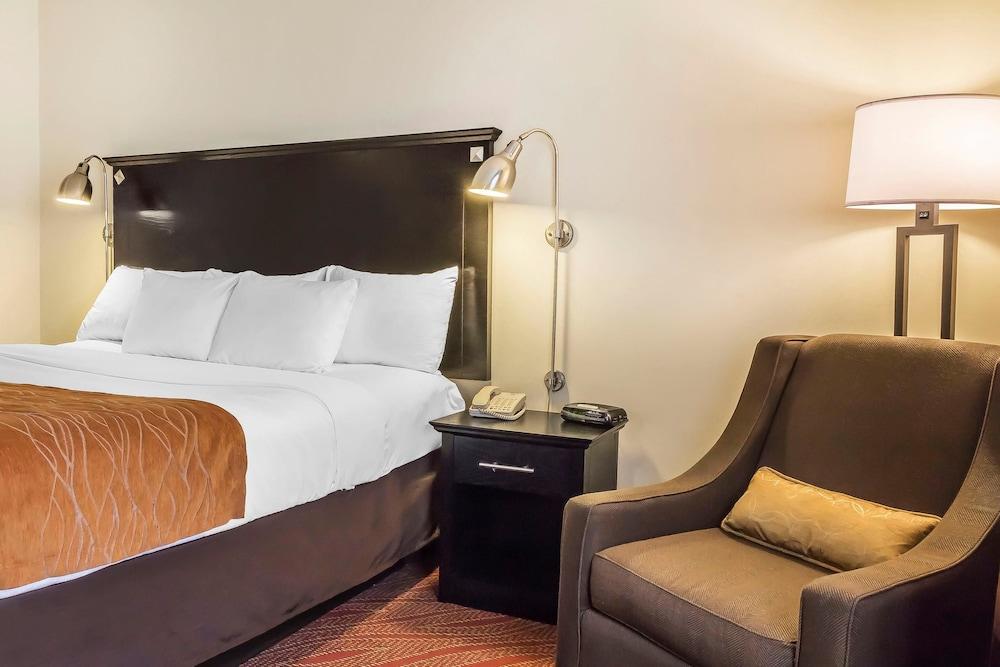 컴포트 인 & 스위트 라과디어 에어포트(Comfort Inn & Suites LaGuardia Airport) Hotel Image 32 - Guestroom