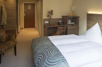 索徹利克肯酒店 Hotel Schlicker
