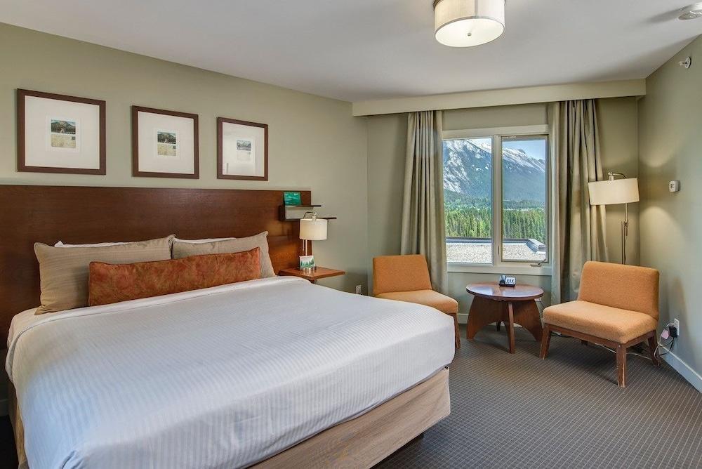주니퍼 호텔(The Juniper Hotel) Hotel Image 8 - Guestroom