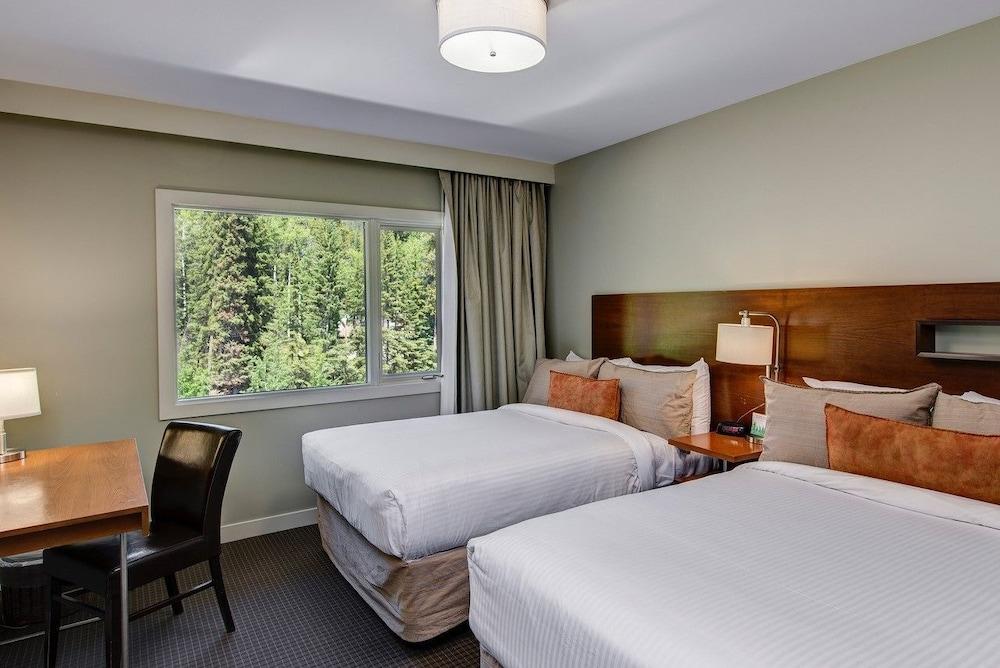 주니퍼 호텔(The Juniper Hotel) Hotel Image 9 - Guestroom