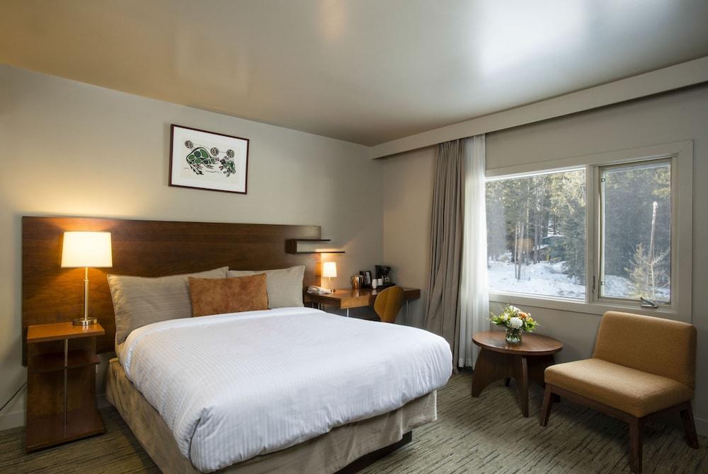 주니퍼 호텔(The Juniper Hotel) Hotel Image 7 - Guestroom
