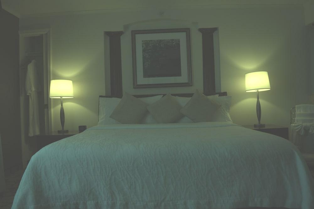 힐튼 가든 인 옥스나드/카마릴로(Hilton Garden Inn Oxnard/Camarillo) Hotel Image 13 - Guestroom