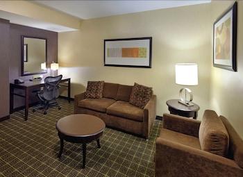 힐튼 가든 인 스프링필드(Hilton Garden Inn Springfield) Hotel Image 32 - Living Room