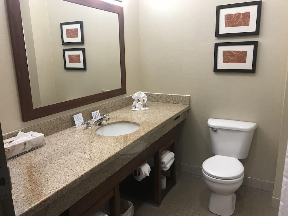 컴포트 스위트 코럴빌(Comfort Suites Coralville) Hotel Image 17 - Bathroom