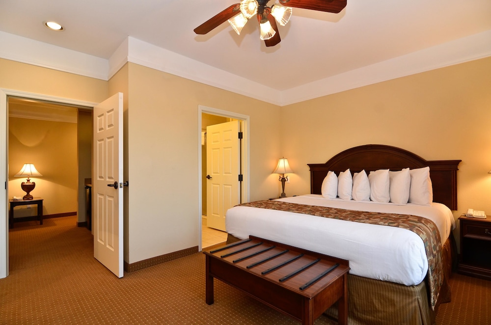 Suite : Suite, 1 King Bed with Sofa bed, Non Smoking, Refrigerator & Microwave (wit 13 of 114