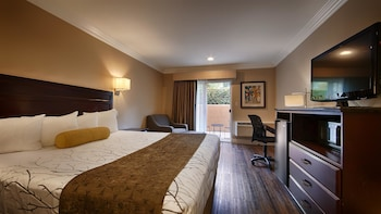 Standard Room, 1 King Bed, Non Smoking, Patio