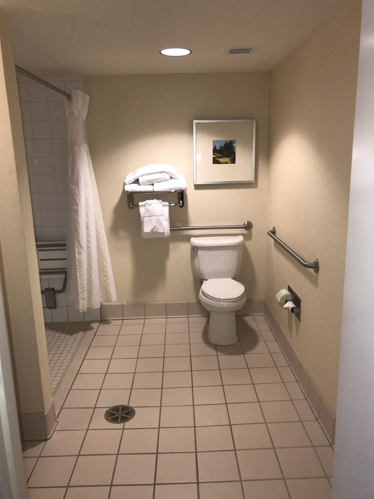 힐튼 가든 인 이타카(Hilton Garden Inn Ithaca) Hotel Image 48 - Bathroom