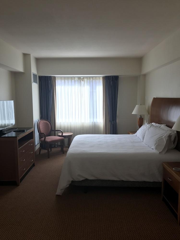 힐튼 가든 인 이타카(Hilton Garden Inn Ithaca) Hotel Image 14 - Guestroom