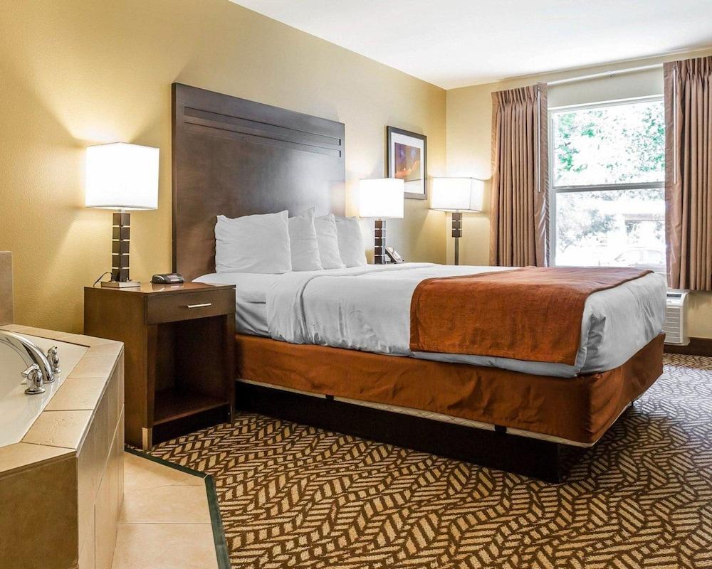 퀄리티 인 & 스위트 몬트클레어(Quality Inn & Suites Montclair) Hotel Image 17 - Guestroom