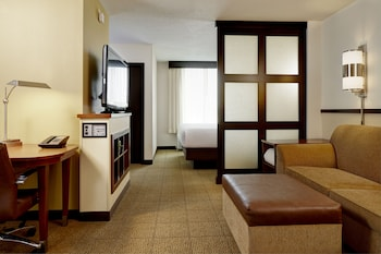 Room, 1 King Bed with Sofa bed (High Floor)