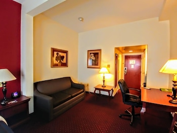 Room, 1 King Bed with Sofa bed, Non Smoking, Refrigerator & Microwave