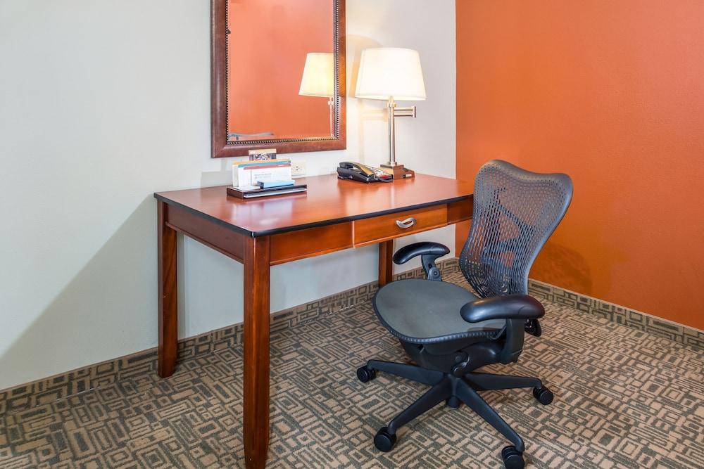 힐튼 가든 인 페이어트빌(Hilton Garden Inn Fayetteville) Hotel Image 14 - Guestroom