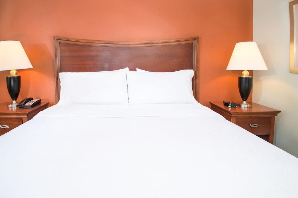 힐튼 가든 인 페이어트빌(Hilton Garden Inn Fayetteville) Hotel Image 15 - Guestroom