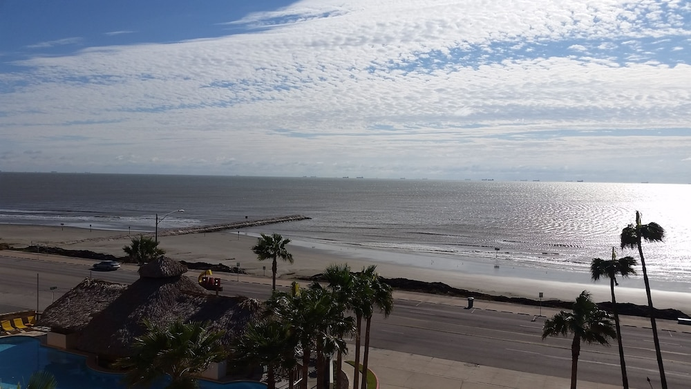 더블트리 바이 힐튼 호텔 갤버스턴 비치(DoubleTree by Hilton Hotel Galveston Beach) Hotel Image 67 - Beach
