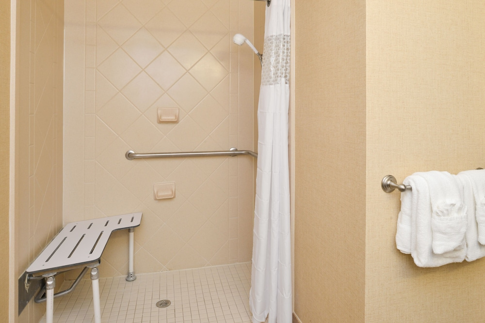 햄프턴 인 & 스위트 레이디 레이크/더 빌리지스(Hampton Inn & Suites Lady Lake / The Villages) Hotel Thumbnail Image 11 - Bathroom Shower