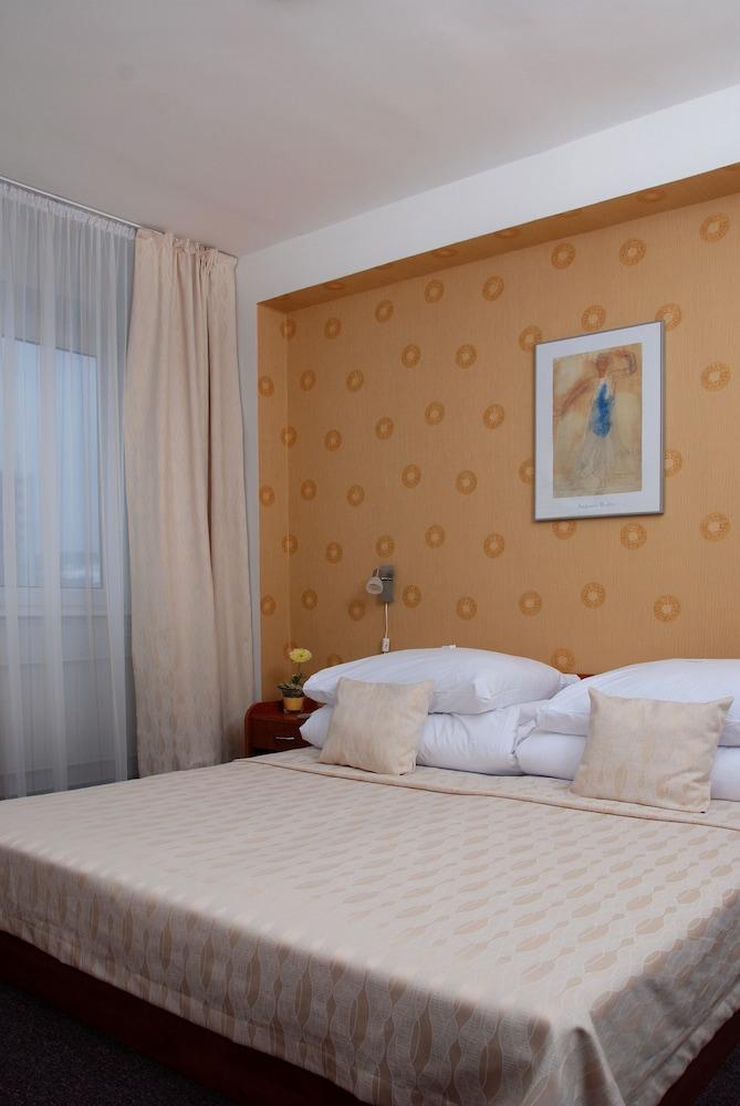 호텔 바론카(Hotel Baronka) Hotel Image 11 - Guestroom