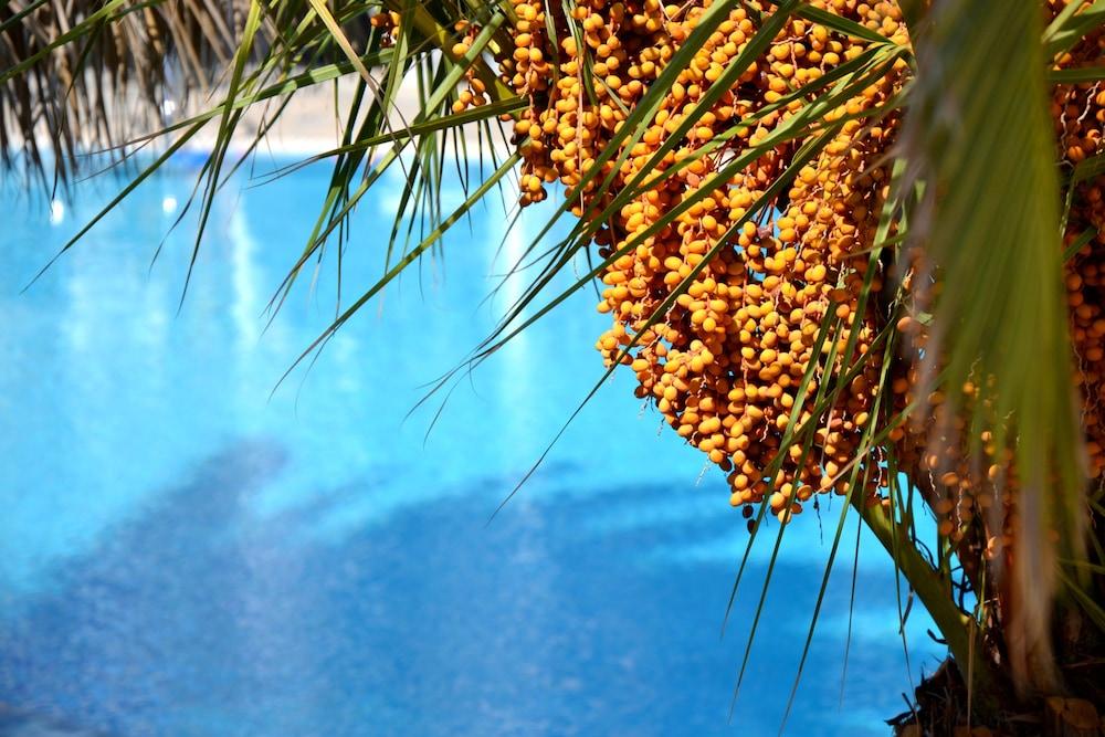 호텔 제피로스(Hotel Zephyros) Hotel Image 68 - Outdoor Pool