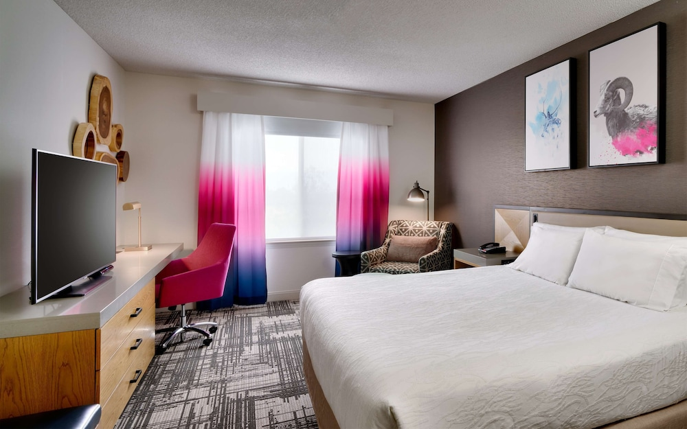 Room, 1 King Bed, Accessible (Hearing)