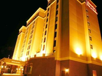 奧爾巴尼中心歡朋套房飯店 Hampton Inn & Suites Albany-Downtown
