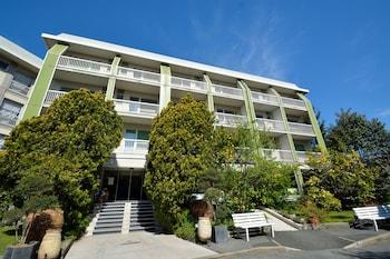 Hotel - Ghironi Hotel