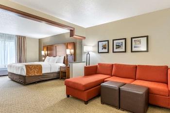 急流城北凱富全套房飯店 Comfort Suites Grand Rapids North