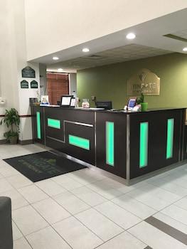 Wingate by Wyndham Panama City Area Lynn Haven - Reception  - #0