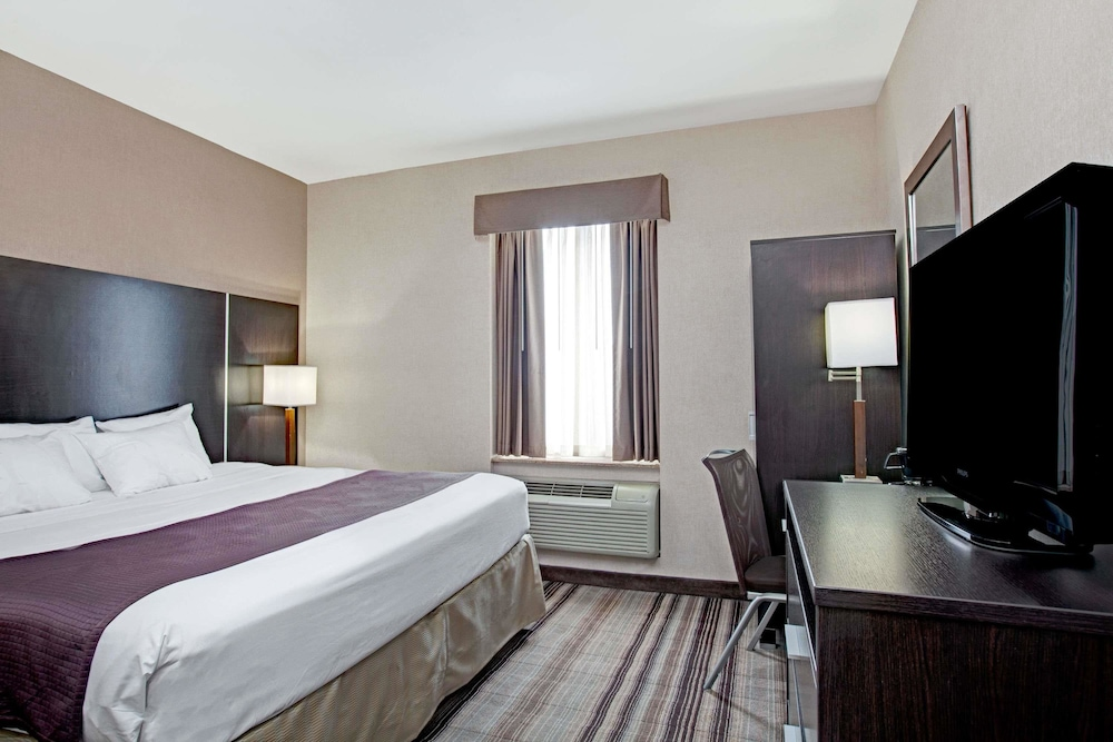 데이즈 인 바이 윈덤 자메이카/JFK 에어포트(Days Inn by Wyndham Jamaica / JFK Airport) Hotel Image 10 - Guestroom