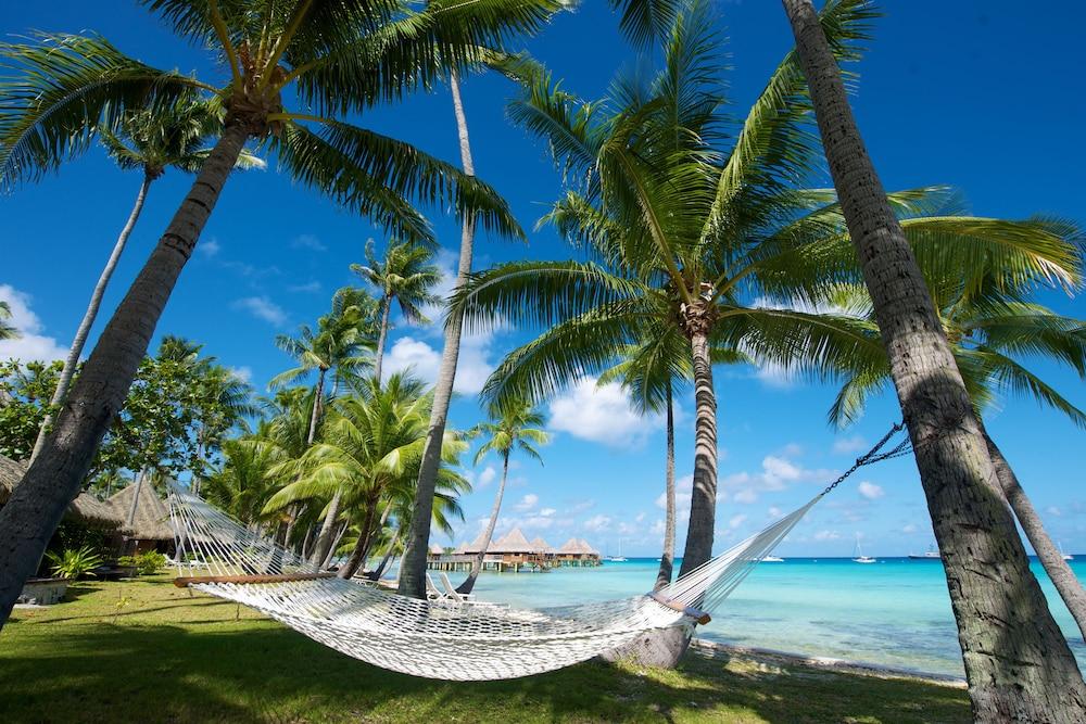 https://i.travelapi.com/hotels/2000000/1330000/1329100/1329033/84b52492_z.jpg