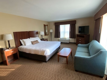 Deluxe Room, 1 King Bed, Non Smoking, Refrigerator