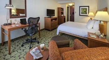 One king bed evolution room