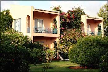 빌라 만다린(Villa Mandarine) Hotel Image 33 - Garden