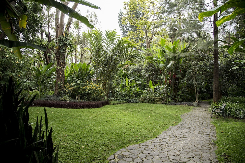 호텔 라스 파롤라스(Hotel Las Farolas) Hotel Image 52 - Garden