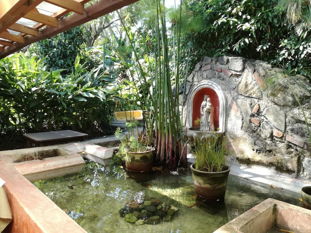 호텔 라스 파롤라스(Hotel Las Farolas) Hotel Image 21 - Property Amenity