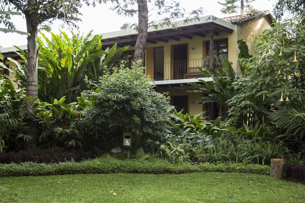호텔 라스 파롤라스(Hotel Las Farolas) Hotel Image 53 - Garden