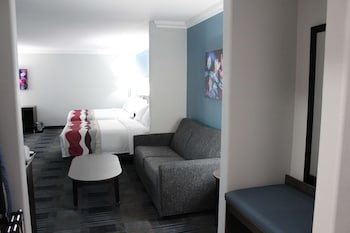 Suite, Multiple Beds, Accessible, Refrigerator & Microwave (with Sofabed)