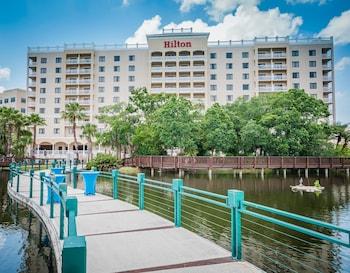 Hotel - Hilton St. Petersburg Carillon Park