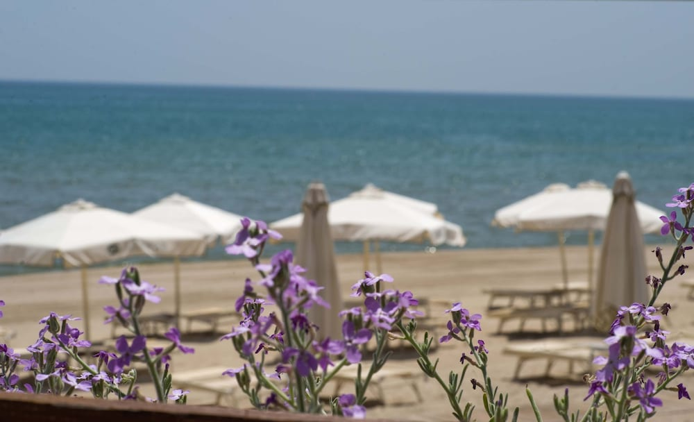 알보레아 에코로지 리조트(Alborèa Ecolodge Resort) Hotel Image 20 - Beach