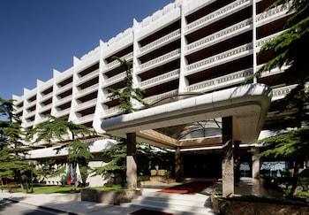 Hotel - Palace Hotel