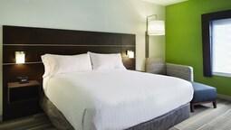 Room, 1 King Bed, Accessible, Bathtub (mobılıty)