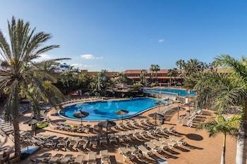 Hotel - Oasis Village