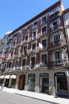 オスタル セルベロ