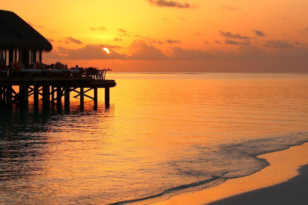 미리히 아일랜드 리조트(Mirihi Island Resort) Hotel Image 80 - Beach