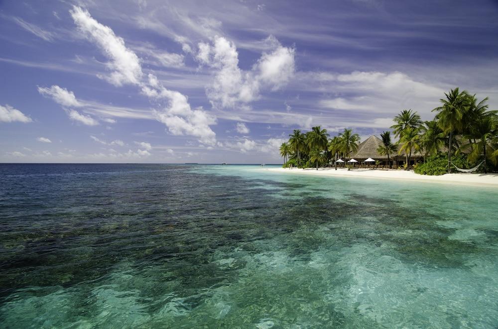 미리히 아일랜드 리조트(Mirihi Island Resort) Hotel Image 83 - Beach