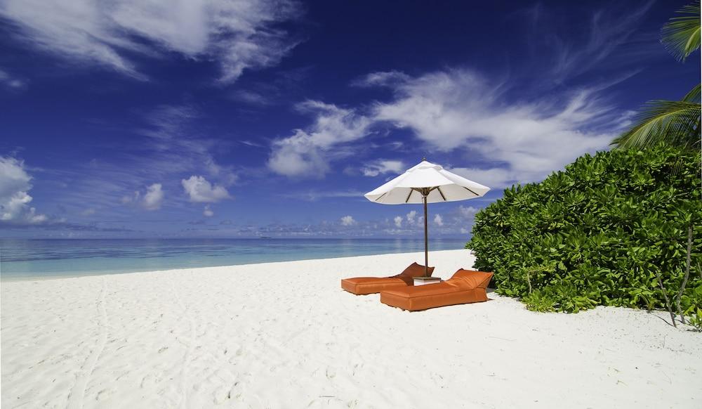 미리히 아일랜드 리조트(Mirihi Island Resort) Hotel Image 87 - Beach