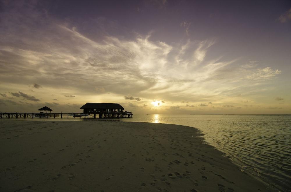 미리히 아일랜드 리조트(Mirihi Island Resort) Hotel Image 78 - Beach