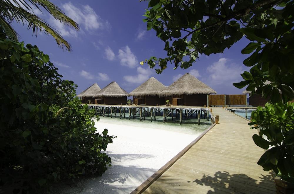 미리히 아일랜드 리조트(Mirihi Island Resort) Hotel Image 6 - Guestroom